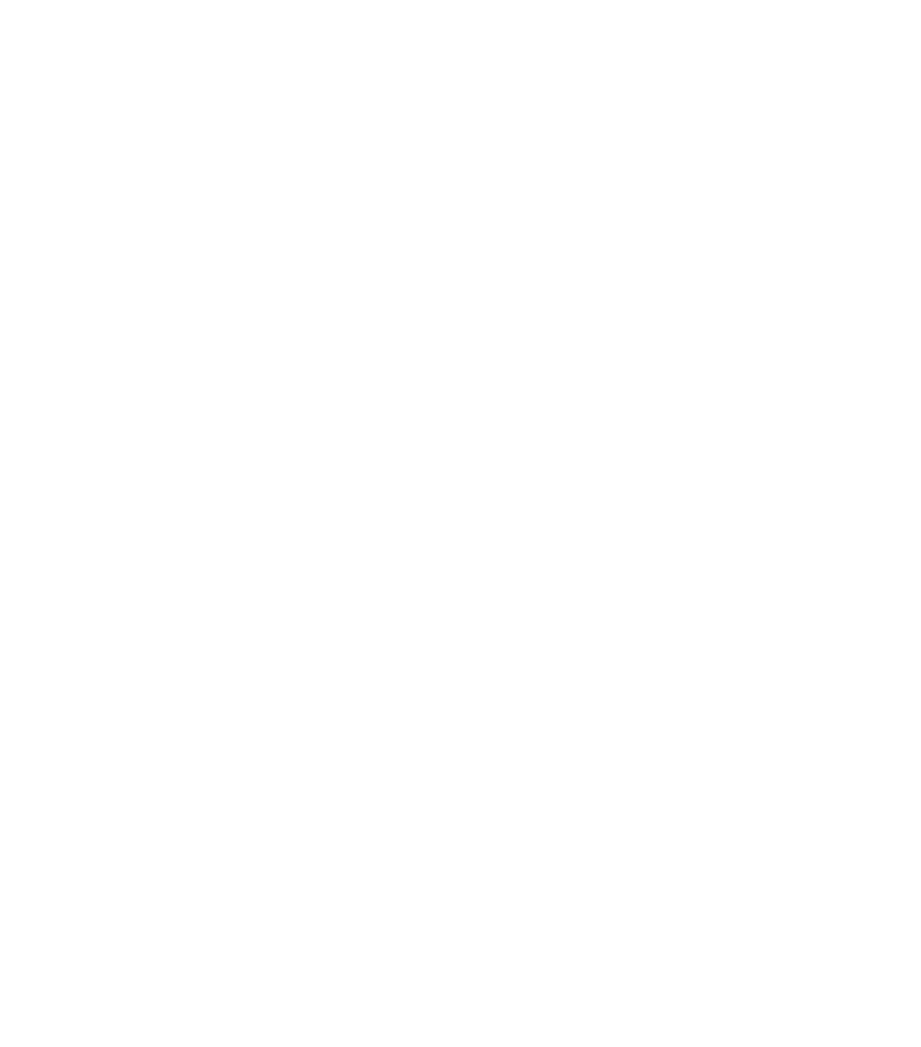 Rawzone